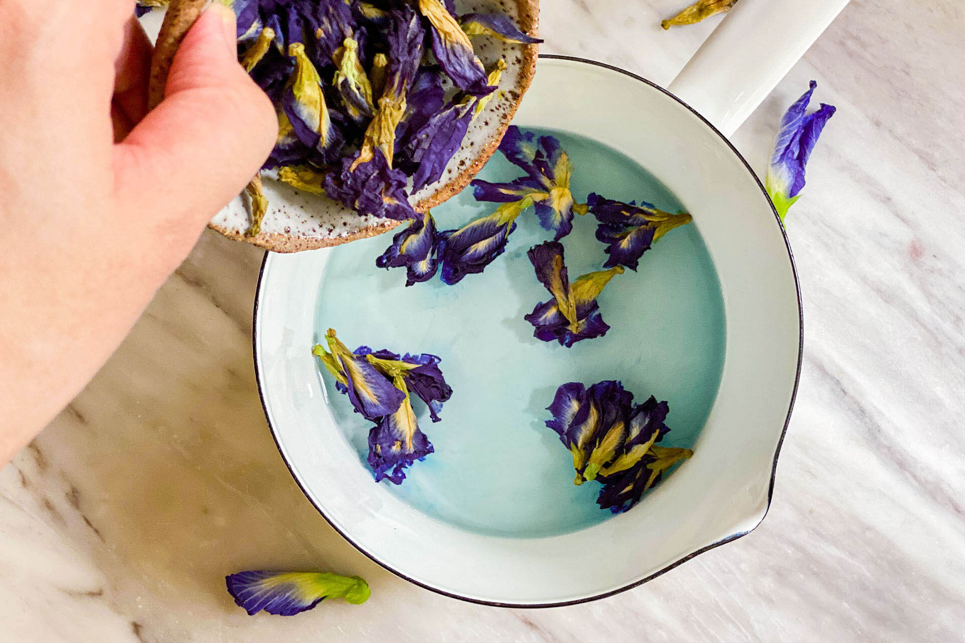 Prepare the butterfly pea flowers